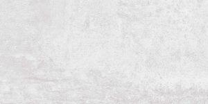 Riva Light grey 30×60 Anka